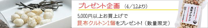 banner_201404present